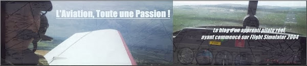 L'aviation, Toute une passion !