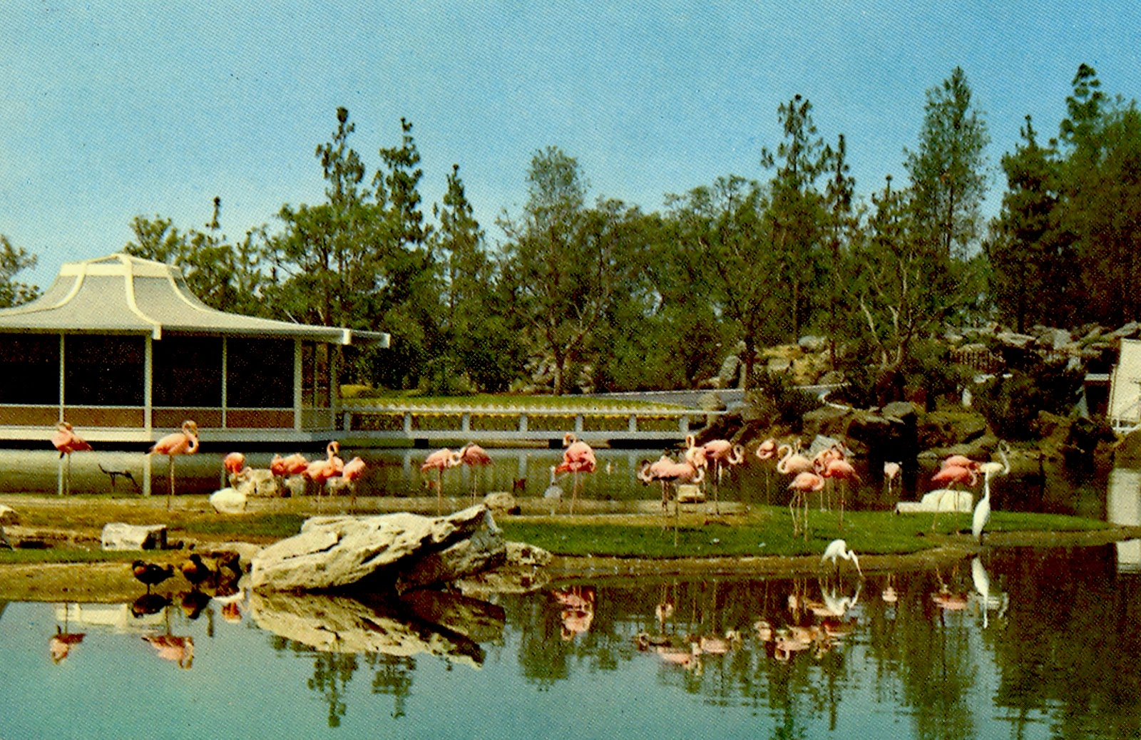 The Museum of the San Fernando Valley: BUSCH GARDENS WAS A HOLIDAY ...