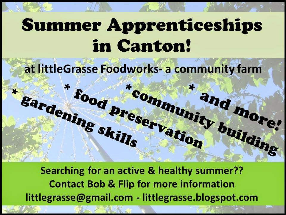on-farm apprenticeships!