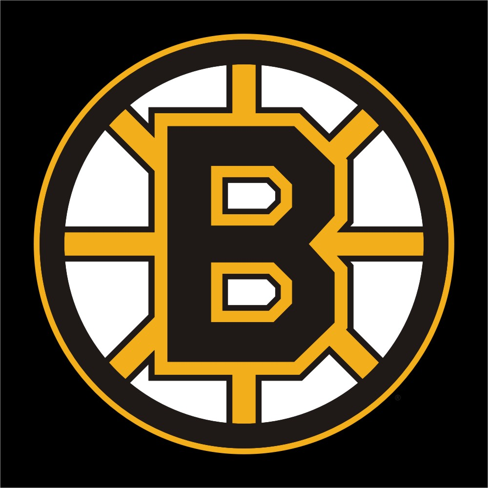 boston bruins wallpaper meet the bear pics hd