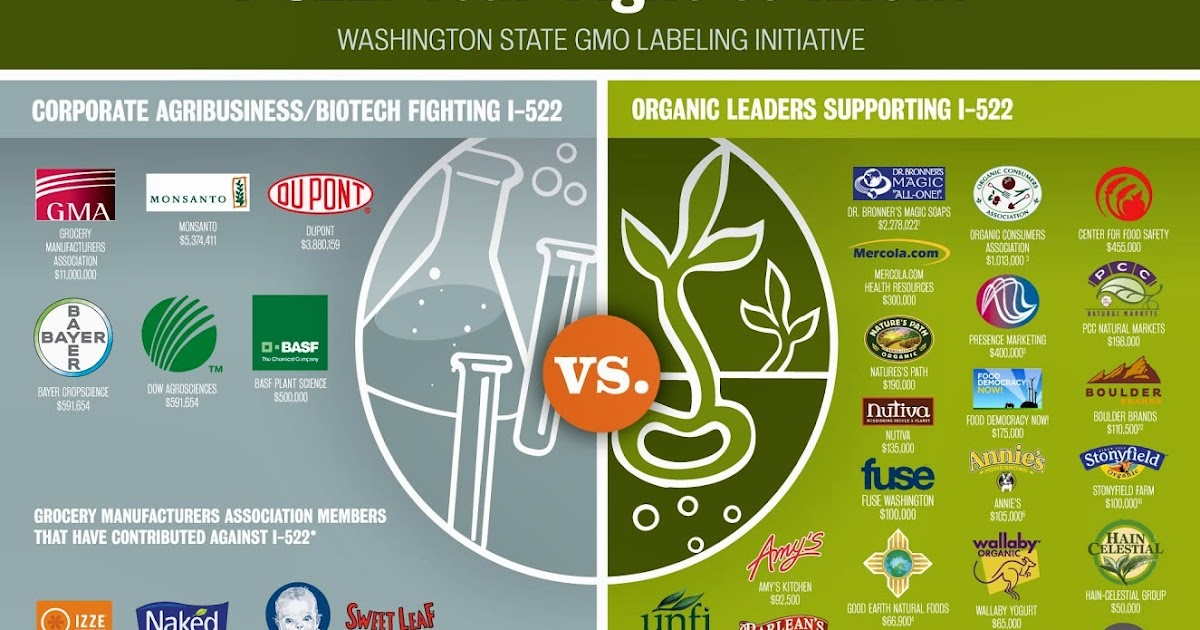 The Negative Effects of Genetically Modified Organisms on our Bodies and on the Environment