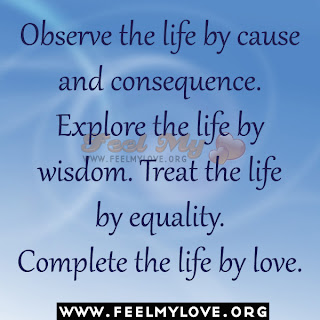 Observe the life by cause and consequence