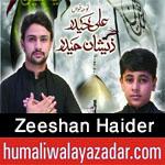 http://www.humaliwalayazadar.com/2015/10/zeeshan-haider-nohay-2016.html