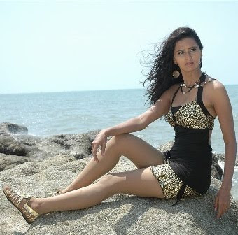 Meenakshi Dixit Hot Wallpapers