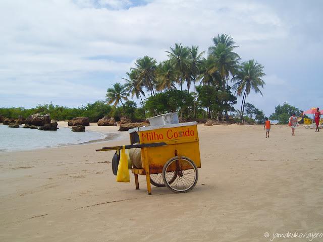 Milho (pulpo) Cosido a la orilla de la playa