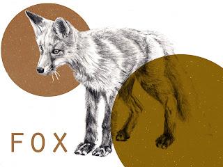 Fox Kawasaki