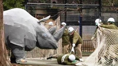 Insólito simulacro en el Zoológico de Tokio.