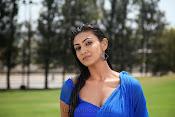 Neelam Upadhyay pics in Blue saree-thumbnail-6