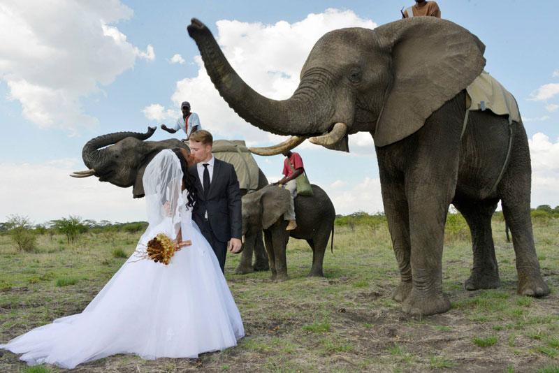 Cenas de um casamento na Africa