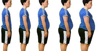 Estudios sobre la obesidad