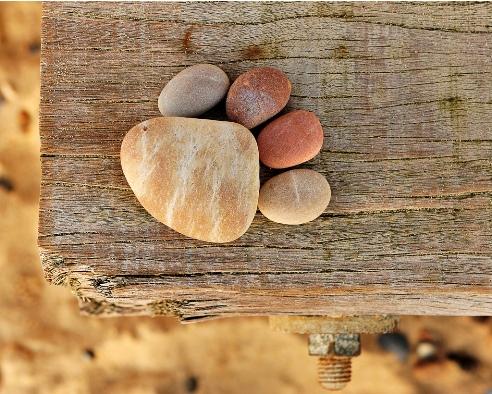 Stone Paw