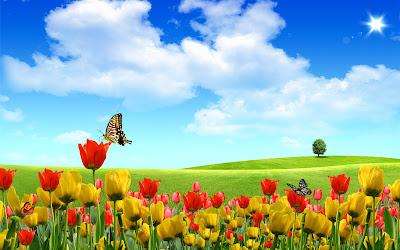 Hermosas mariposas recolectando el polen de las flores