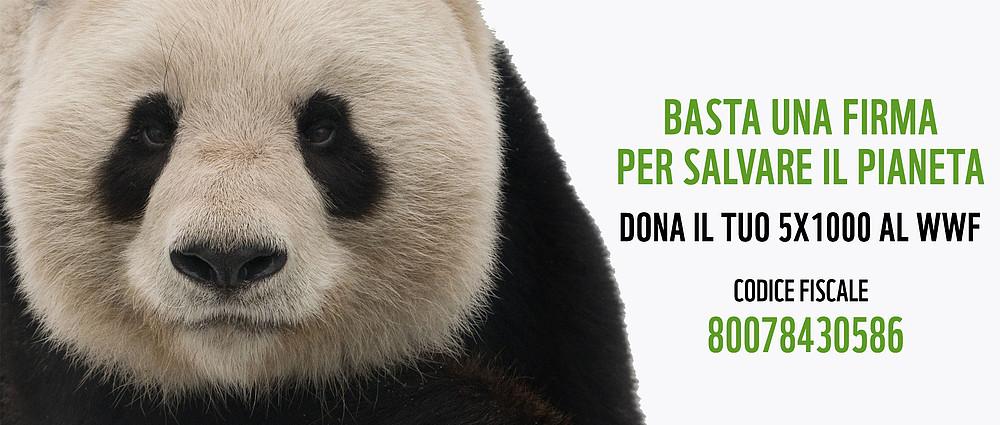 Dona il 5x1000 al WWF