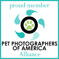 Pet Photographers of America Alliance Member