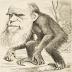 L'evolució encara és vàlida pels humans?