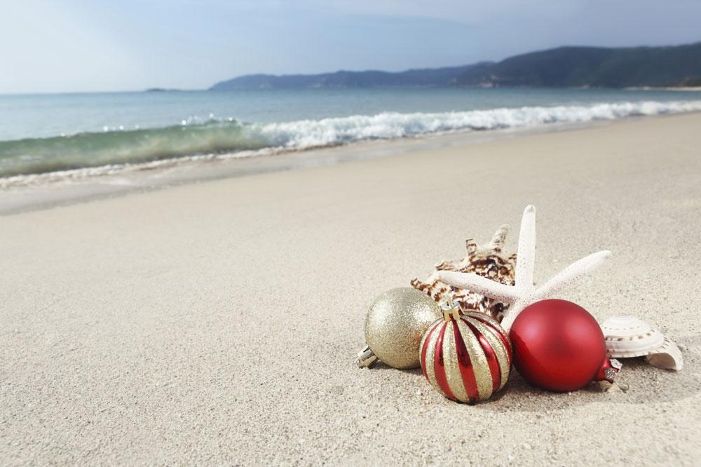 Free Clip Art Tropical Christmas