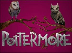 Entra in Pottermore