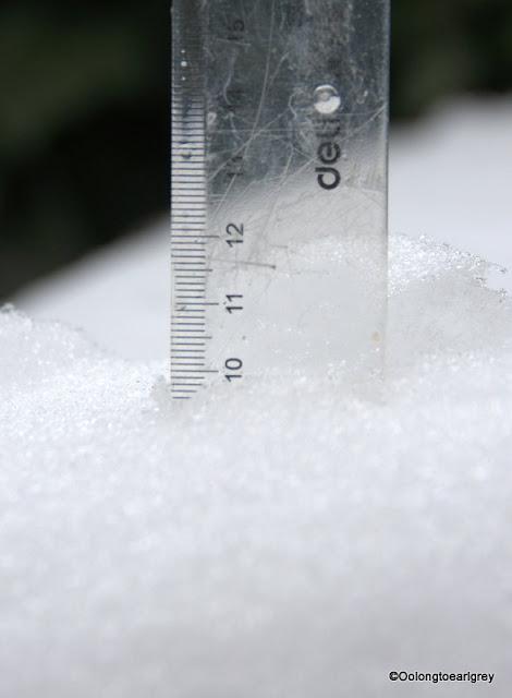 Snowfall 10cm
