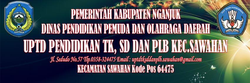 UPTD TK, SD DAN PLB SAWAHAN