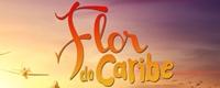 http://4.bp.blogspot.com/-A4KFqcx6d-8/UUWDB44w_mI/AAAAAAAAOWY/-H-SVZKsK-k/s1600/flor+do+caribe.jpg