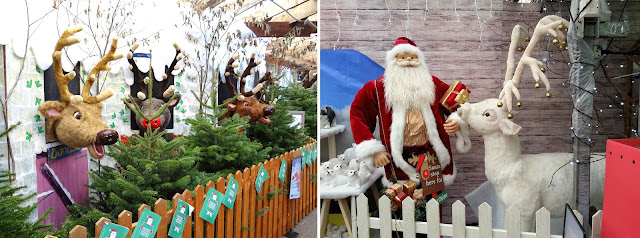 Breakfast with Santa, Tea with Santa, Garden Centre Christmas event