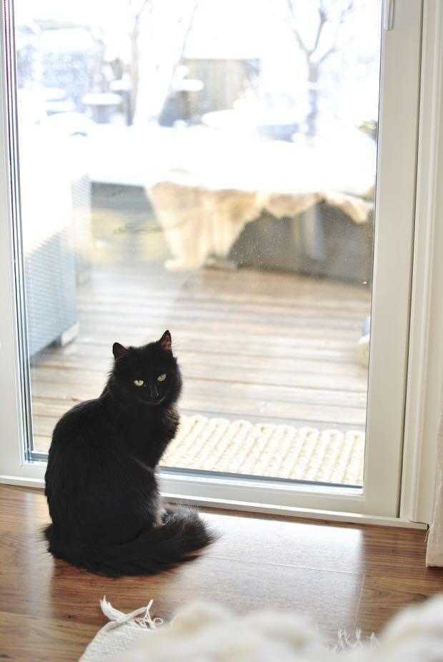 hannashantverk.blogspot.se svart katt altandörr sovrum