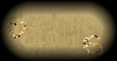 The Burke 6 2011