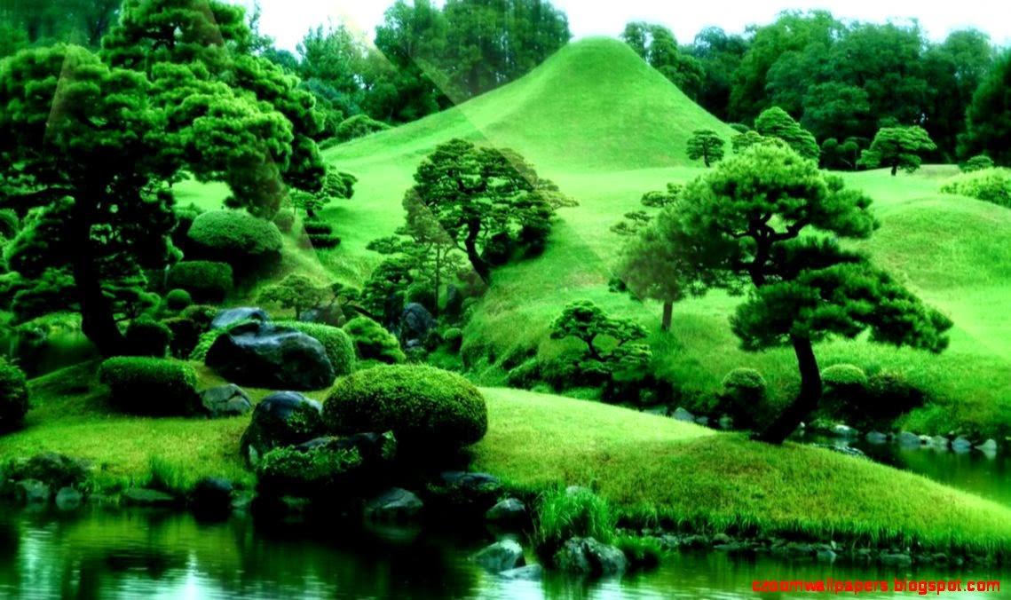 Zen Garden Live Wallpa...