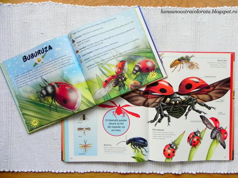 citim despre buburuze din Prima mea enciclopedie - Insecte de la editura Aquila `93
