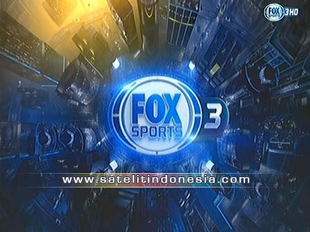 big tv fta channels