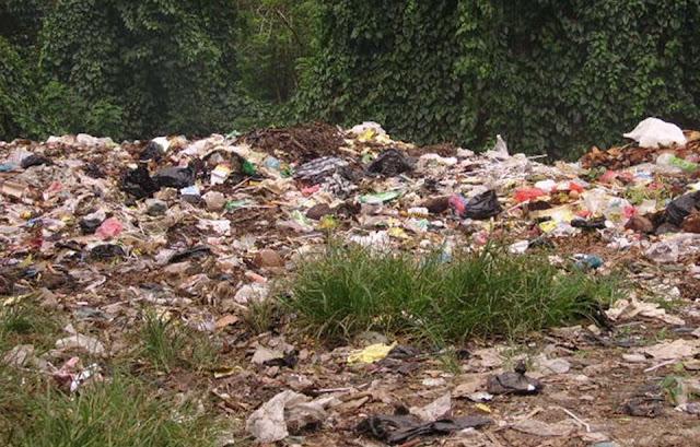 penyebab, dampak, serta cara mengatasi dan menanggulangi pencemaran tanah