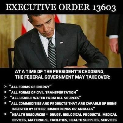 BARACK OBAMA: The Last American President