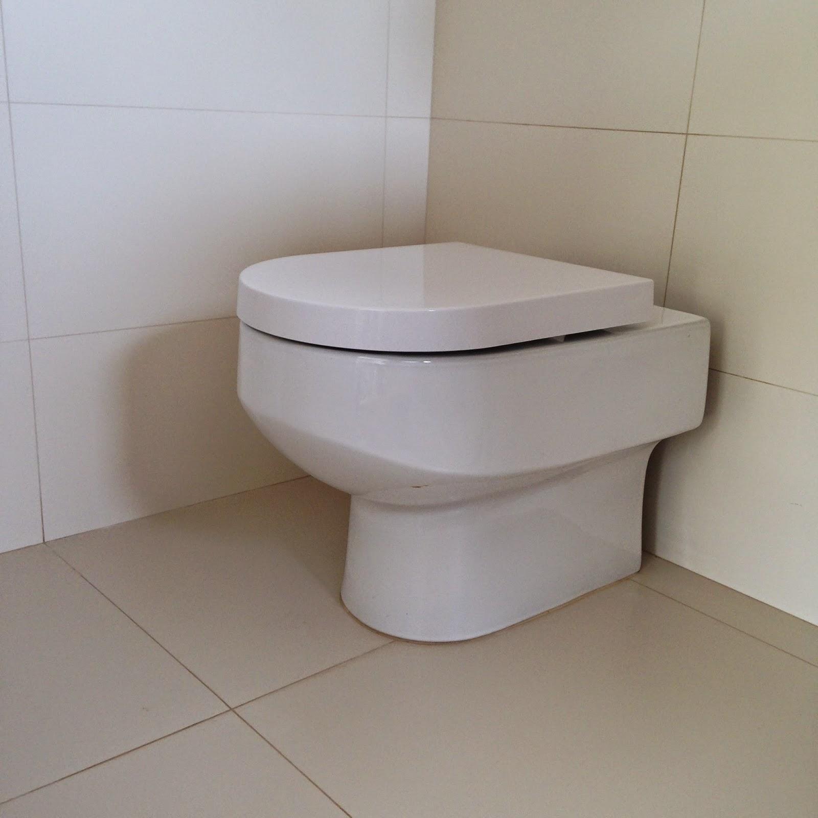 Detalhe do vaso Deca Carrara branco (R$450 na C&C) e assento Deca com  #614D3B 1600x1600 Banheiro Com Detalhe Amadeirado