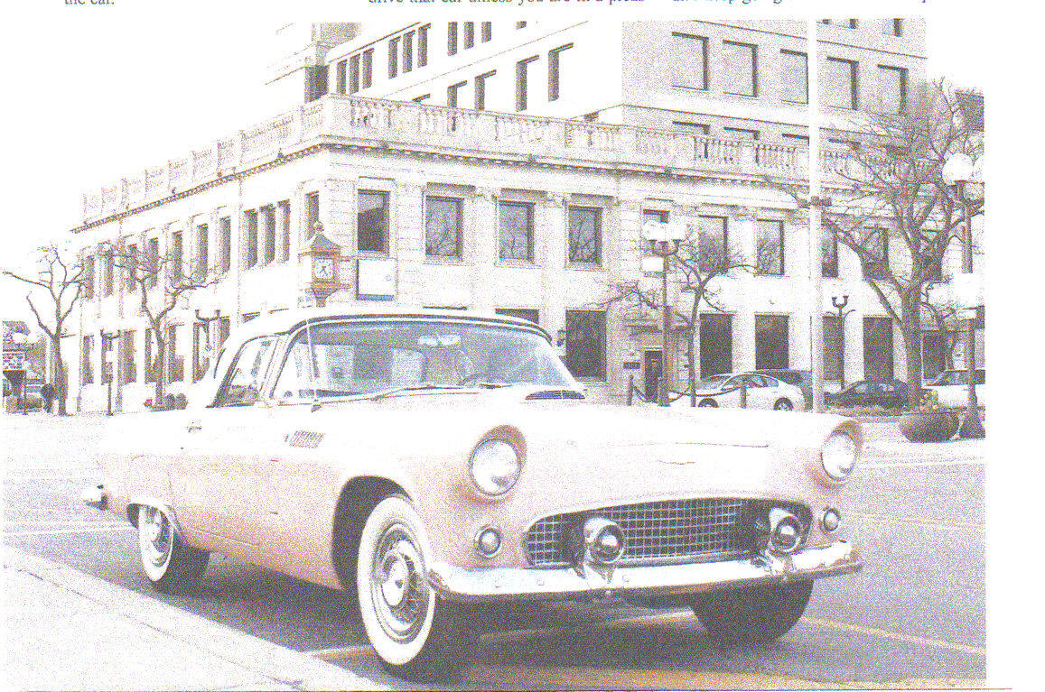 Imperfect 1956 t bird is just the right pet for its new master by debra powless