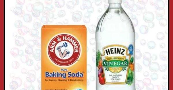Baking Soda Vinegar Play Growing A Jeweled Rose
