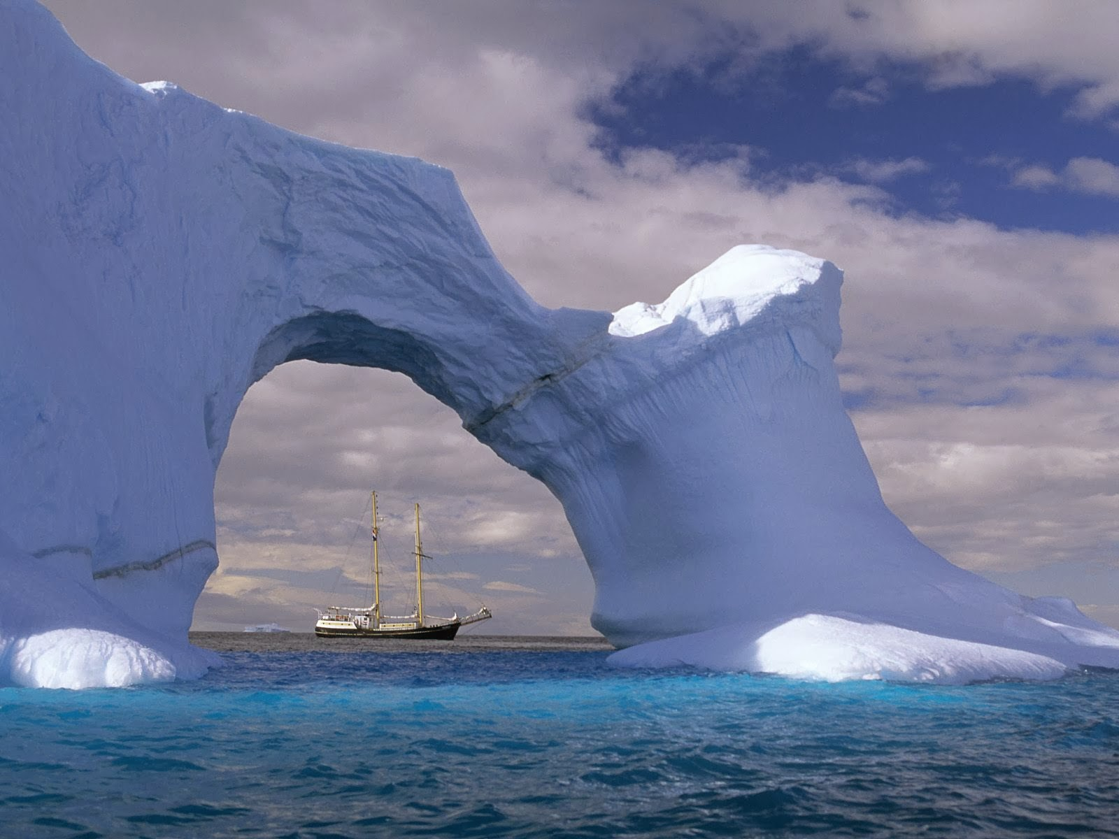 Antarctic and Arctic features in Common