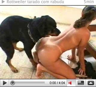 Rottweiler Comendo Rabuda