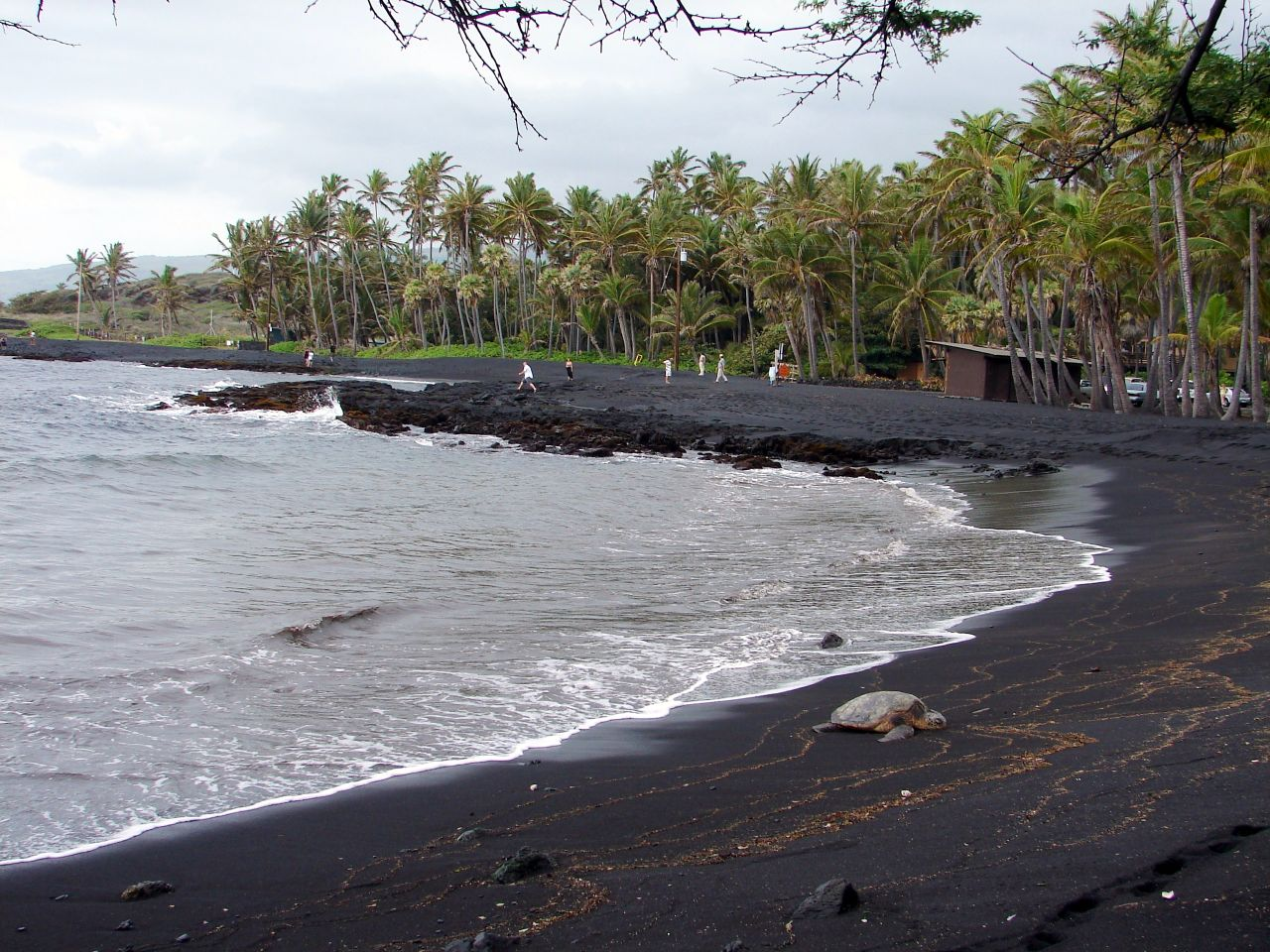 Punalu'u Beach – Hawaii