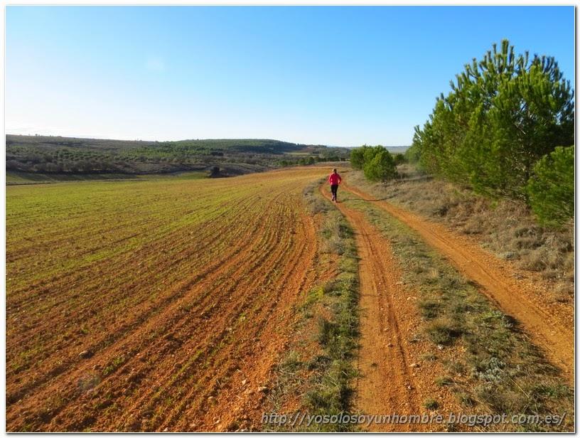 Camino de tierra roja
