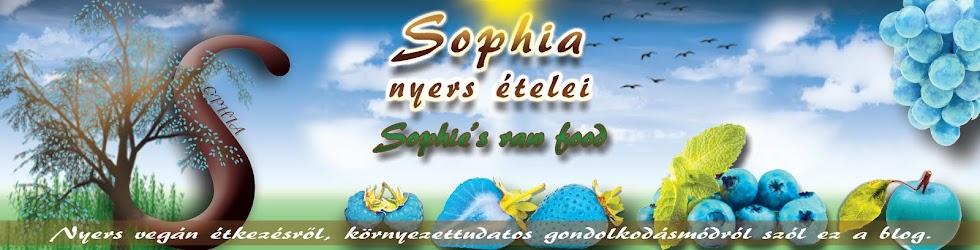 Sophia nyers ételei