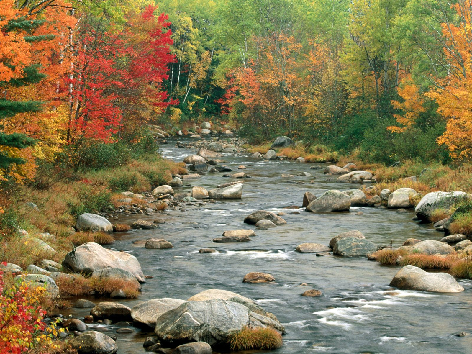 White Mountains New Hampshire Fall Colors