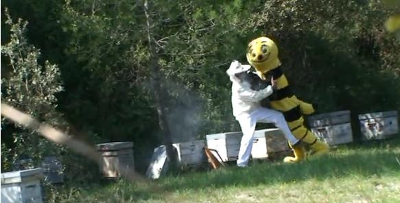 Vidéo Rémi Gaillard abeille