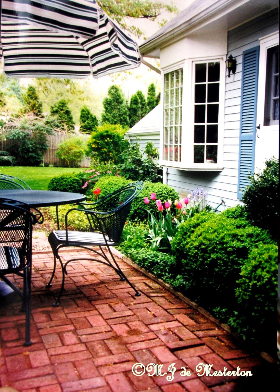 Elegant Gardening Elegant Hardy Boxwood Shrubbery