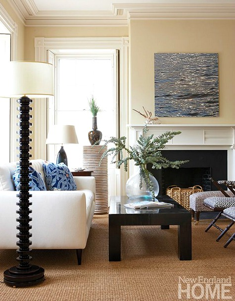 Traditional Nautical Living Room With Modern Coffee Table And Art