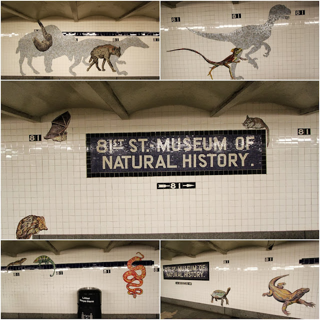 Taking a subway train to Museum of Natural History in New York City, USA