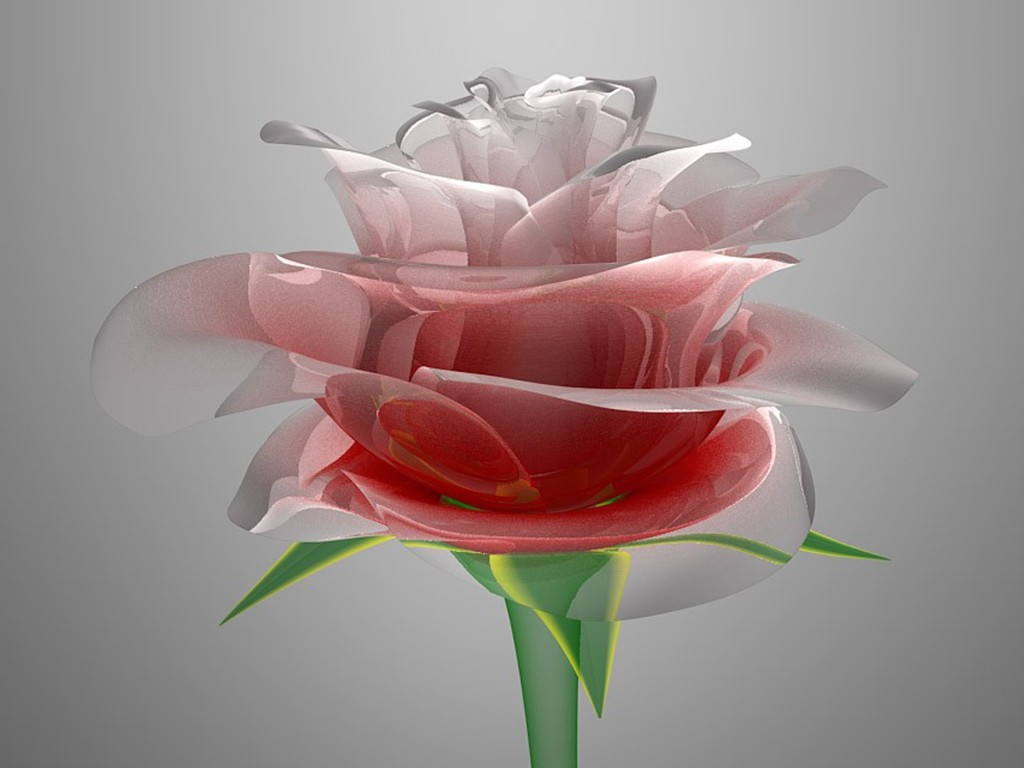 http://4.bp.blogspot.com/-A764BCpGtKU/T1h_E_d4ZUI/AAAAAAAAMes/i6jH6aHFYfA/s1600/glass-red-rose,1024x768,ipad-2-wallpaper,6504+-+Copy.jpg