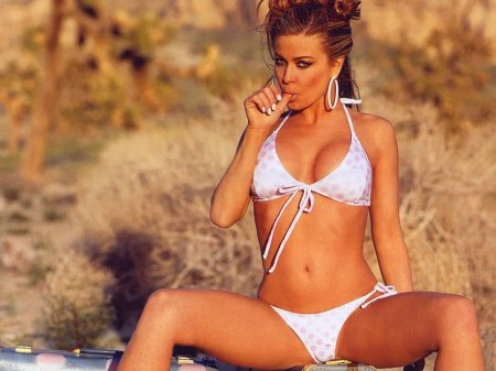 Carmen Electra Hot Photos(1)