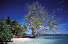 Visitindonesia; Siberut Island, The Largest Isle Inward Mentawai Archipelago