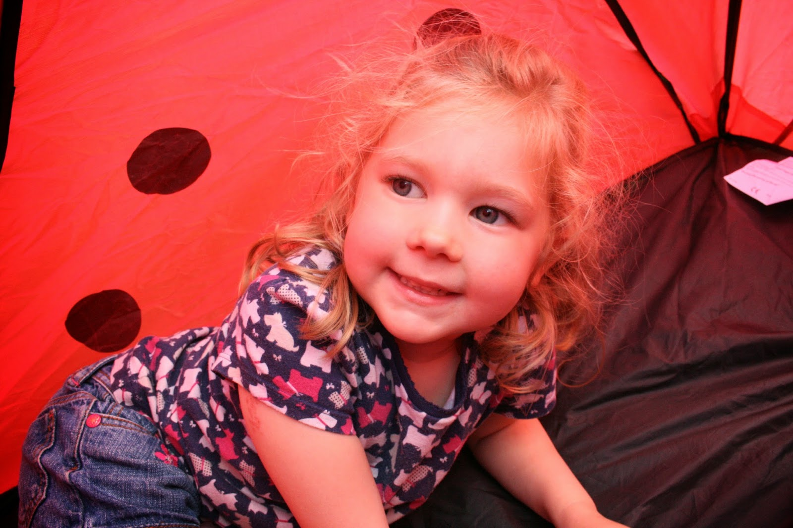 Theyu0027ve been having lots of imaginative and creative fun in their ladybird tent role-playing lots of c&ing and hiding games with shrieks of  quick ...  sc 1 st  two tiny terrors - Blogspot & two tiny terrors: The Little Red Ladybird Tent