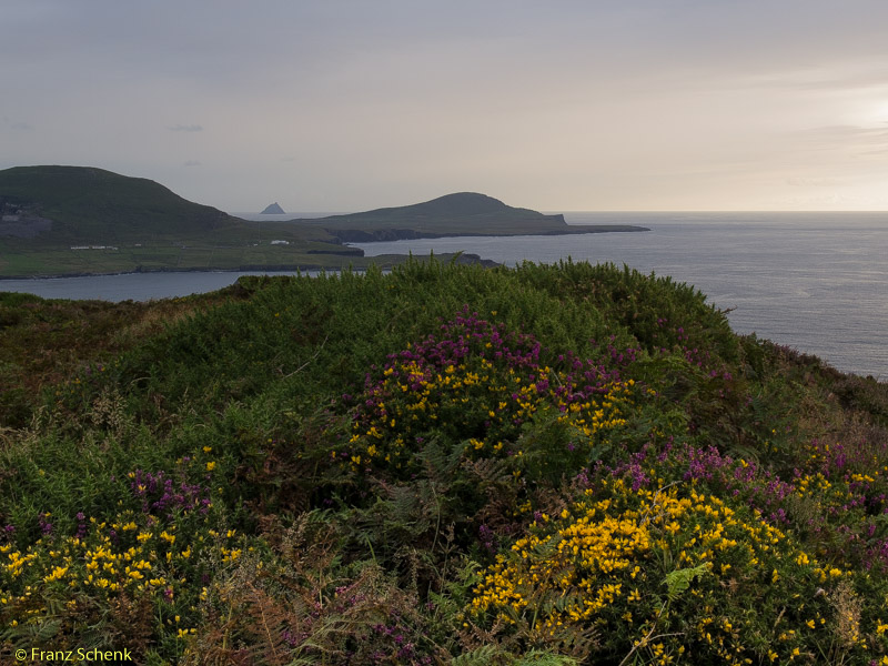 View from Doulus Head to Skellig St. Michael